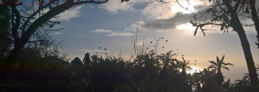 Auszeit in der Natur